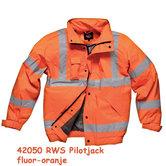 RWS-Pilotjack